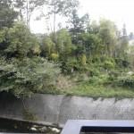 台風の風景